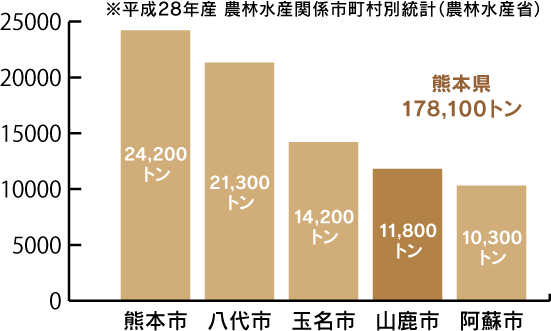 平成28年度 農林水産関係市町村別統計(農林水産省より) 熊本県合計178,100トン