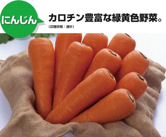 にんじん カロチン豊富な緑黄色野菜