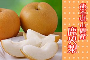 9月のメルマガ商品画像